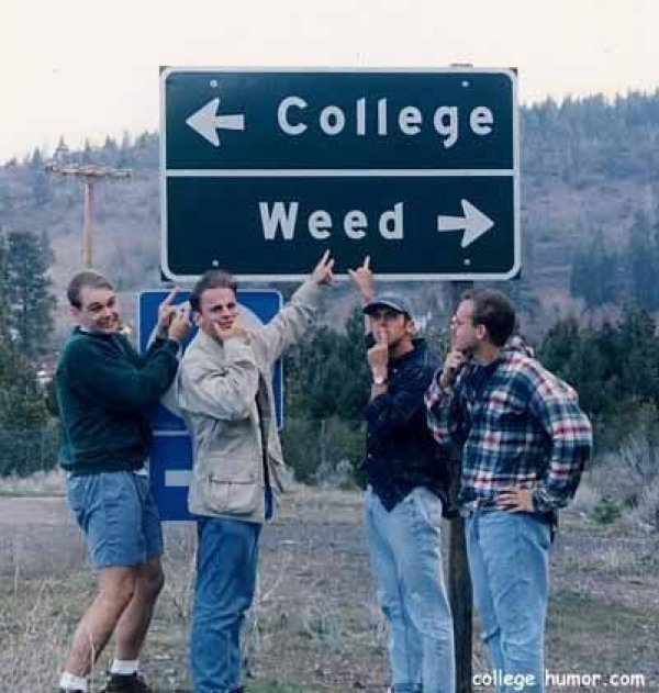 Intersection of College and Weed