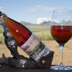 Love Wine? Check Out These Vineyards Across Arizona