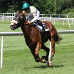 Horse Racing Bets and Your Chances of Winning