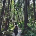 3 Hiking Safety Tips on Your Next Trek