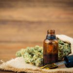 CBD Oil For Anxious Pets: Does It Work?